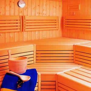 Sauna Dijon, Vente et installation